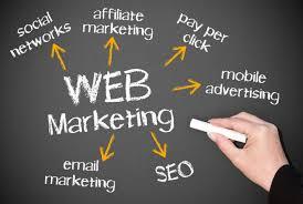 web marketing attività pesaro