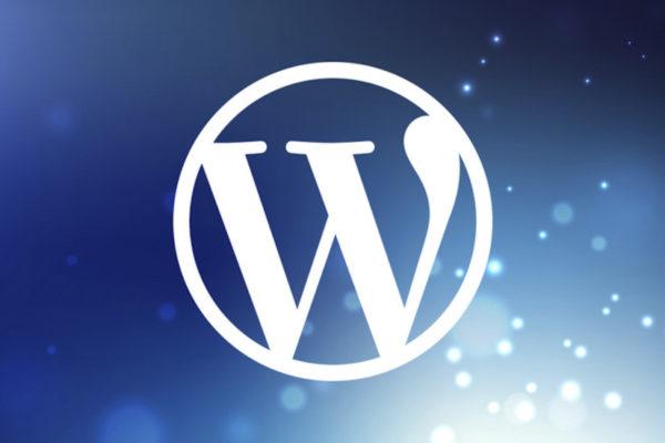 creazione siti wordpress pesaro